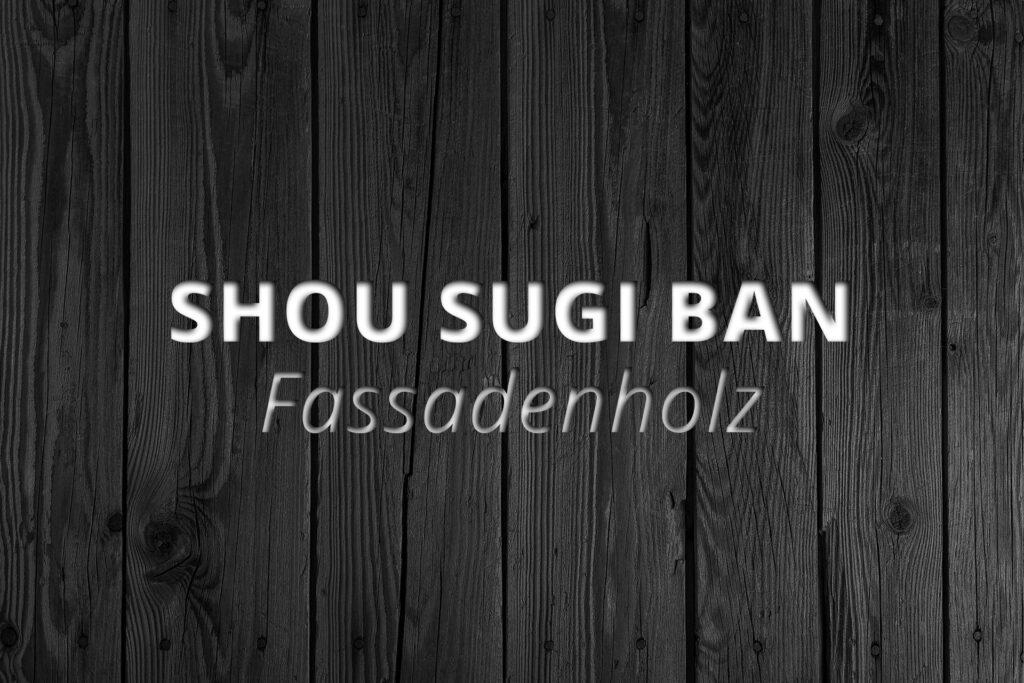 fassadenholz_projekt-eigenheim